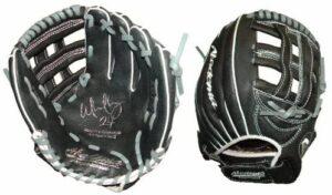 Series Glove